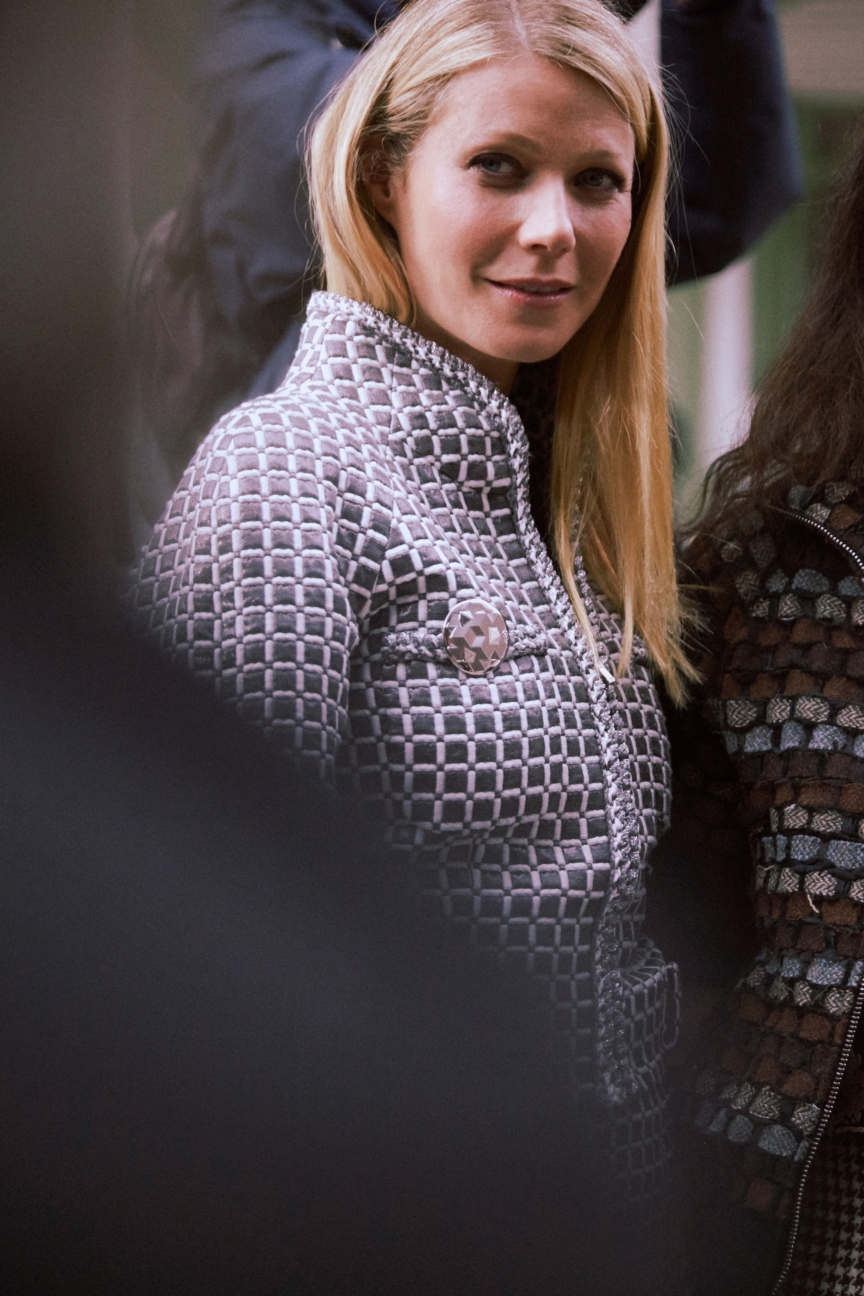 04_ss-16-hc_vip-picture-by-stacy-fuller_gwyneth-paltrow
