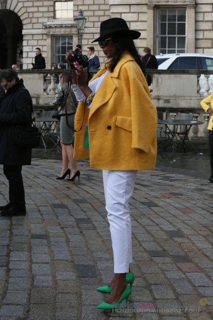 ktz-london-fashion-week-autumn-winter-2014-00143