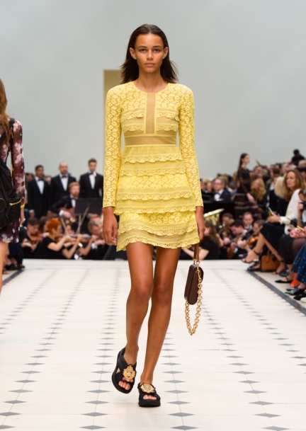burberry-womenswear-s_s16-collection-look-26