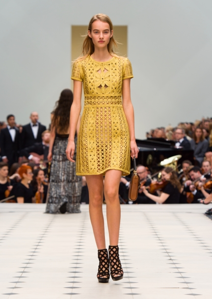 burberry-womenswear-s_s16-collection-look-35
