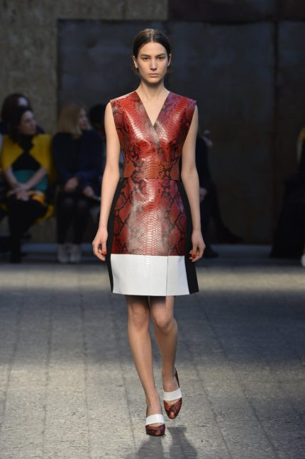 sportmax-collection-milan-fashion-week-autumn-winter-2014-00017