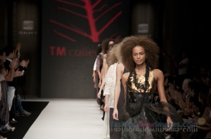 tm_collection_1